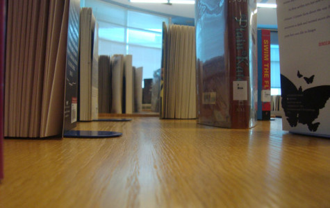 Library receives new books for the school year
