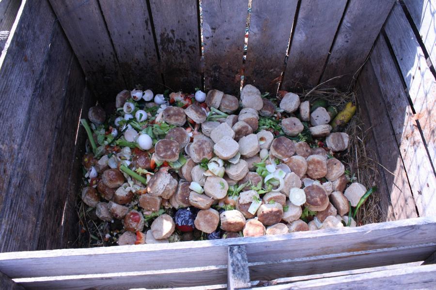 Heie initiates compost program