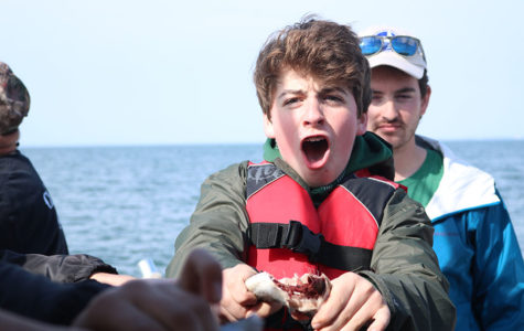 STEM goes to the Chesapeake Bay