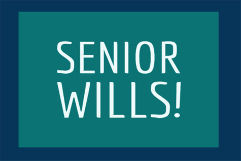 Submit your senior will!