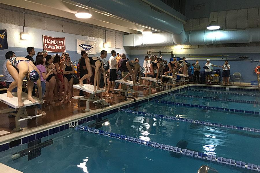 Swimmers prepare to dive in for the 100 meter breaststroke.
