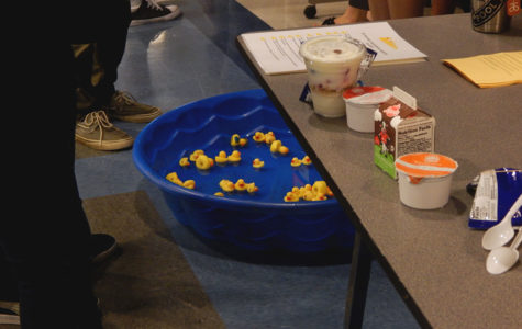 Counselors work the GEAR UP table at lunch. In this activity, students picked a duck and read off the number to the counselors who gave them a question corresponding to the number. If the student answered correctly then they would get the duck they chose.