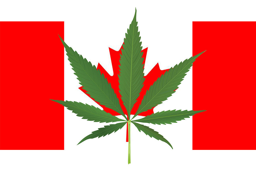 Canada made the right decision by legalizing marijuana