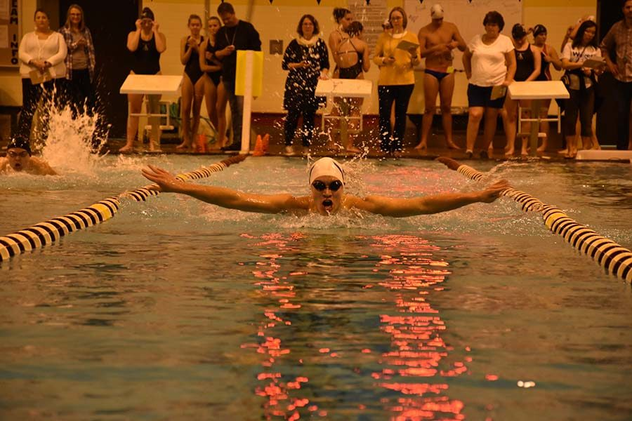 Senior William Daniel swims the last 50 of his 100 butterfly.
