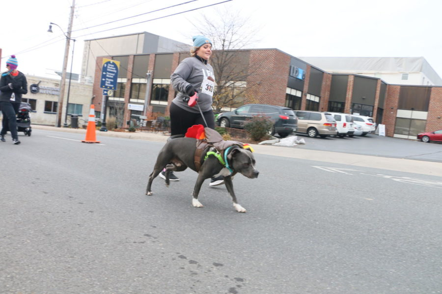 Owners dress up their pets in festive costumes and have them run in the race.