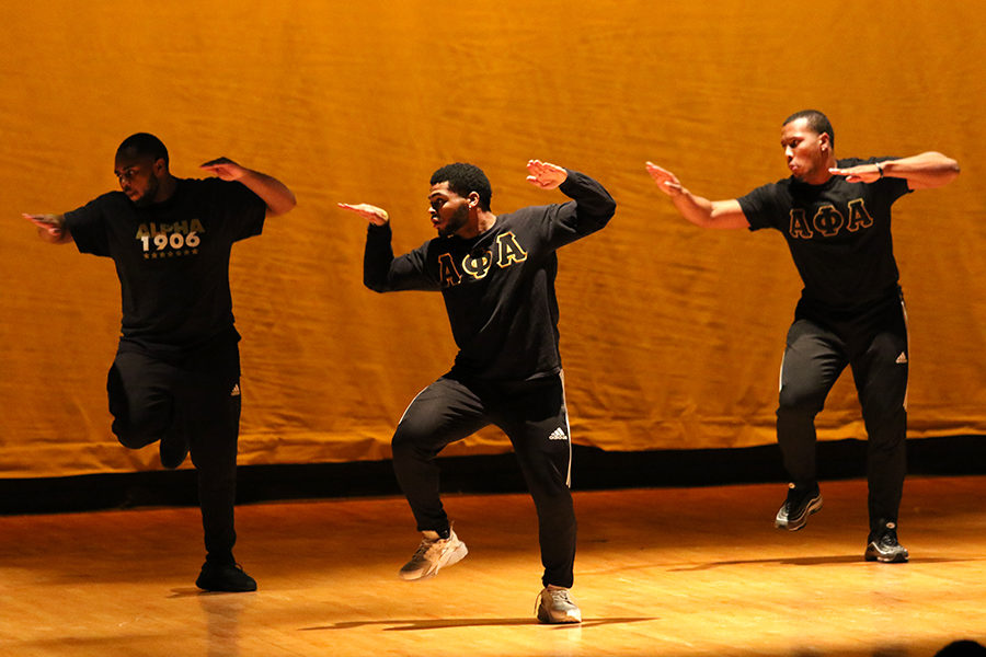 JMU's Alpha Theta Alpha chapter's step team visits and performs at the talent show.