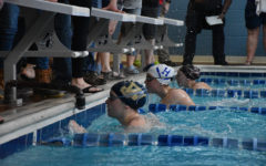 Eight swimmers earn honors at annual Black and Blue invitational