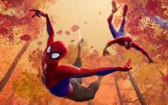 'Spider-Man: Into The Spider-Verse' is best animated film in long time