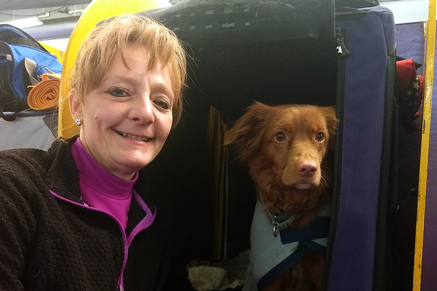 Wendy Pendleton shows off her Nova Scotia Duck Tolling Retriever.
