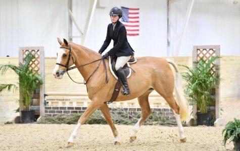 Bellamy rides for exercise, fun