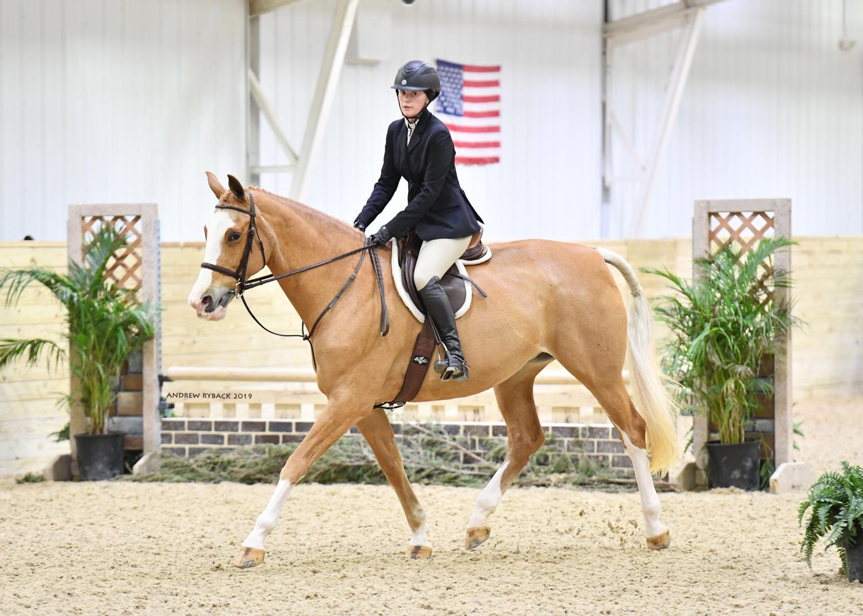 Senior Ellie Grace Bellamy rides her horse at the World Equestrian Center in Wilmington, Ohio.