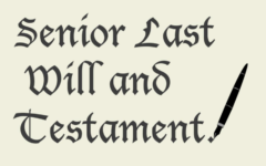 Senior Wills Form