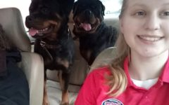 Broughman breeds Rottweilers as part of family tradition