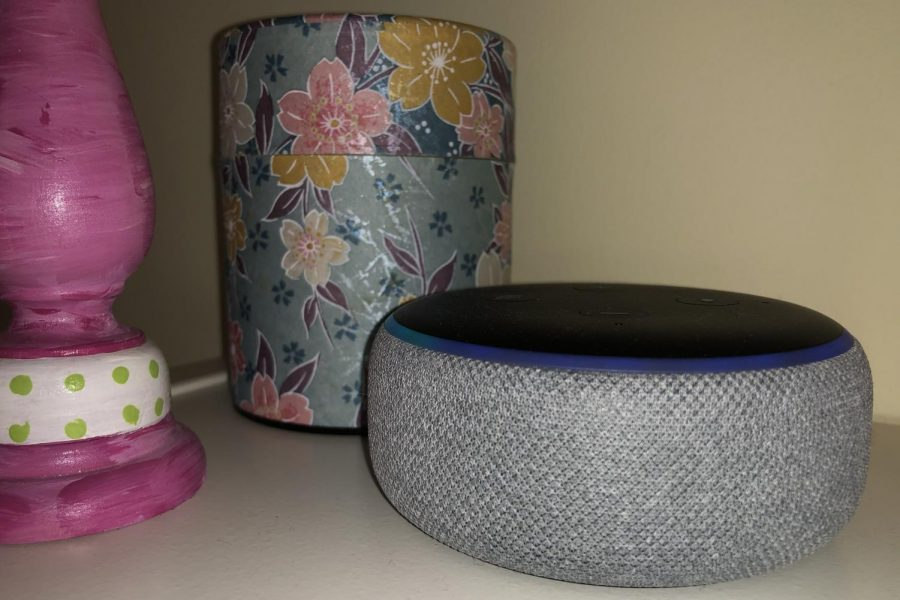Amazon+Echo+Dots+%28pictured+above%29+are+one+of+the+many+speaker+variations+of+the+Echo+speaker.+
