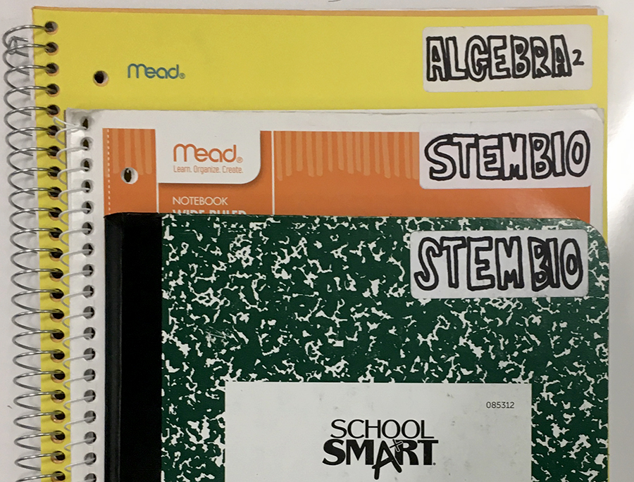 Thompson's organizational strategy for two of her classes. She chooses to use colored folders and notebooks with clear labels.