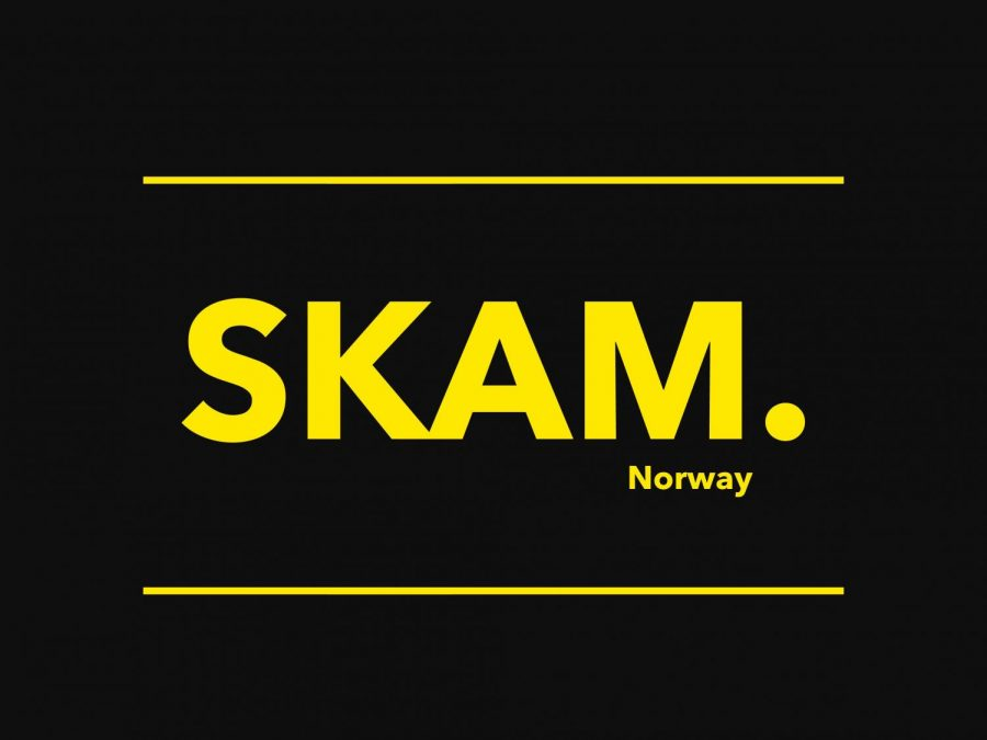 Taking+place+in+Norway%2C+SKAM+%28meaning+shame+in+Norwegian%29+tracks+the+lives+of+four+high+schoolers+over+the+course+of+four+seasons+and+tackles+issues+such+as+racism%2C+mental+health%2C+sexual+assault%2C+homophobia+and+many+more.