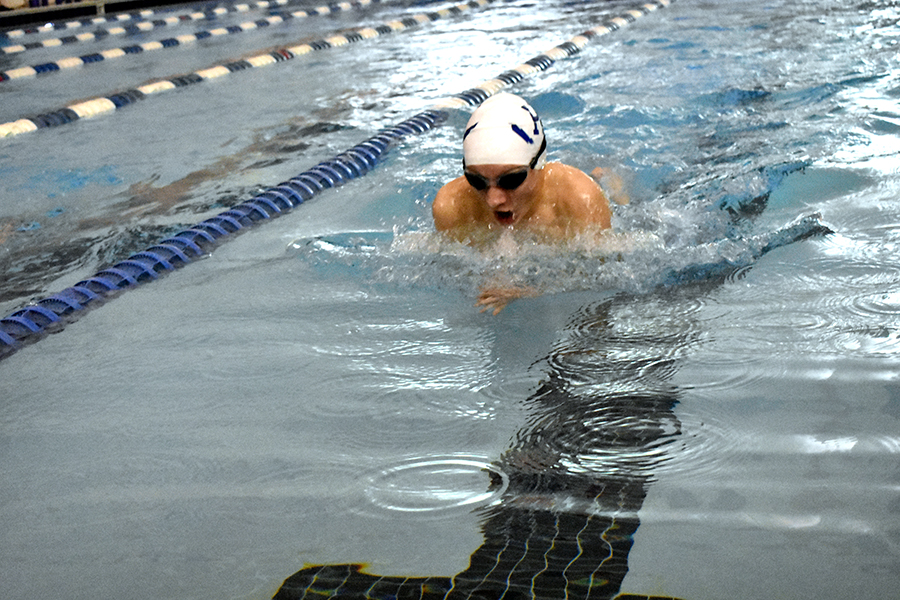 Sophomore Micah Tongen swims breaststroke during the boys 200 medley relay.