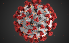 This illustration, created at the Centers for Disease Control and Prevention (CDC), reveals ultrastructural morphology exhibited by coronaviruses. A novel coronavirus, named Severe Acute Respiratory Syndrome coronavirus 2 (SARS-CoV-2), was identified as the cause of an outbreak of respiratory illness first detected in Wuhan, China in 2019. The illness caused by this virus has been named coronavirus disease 2019 (COVID-19).