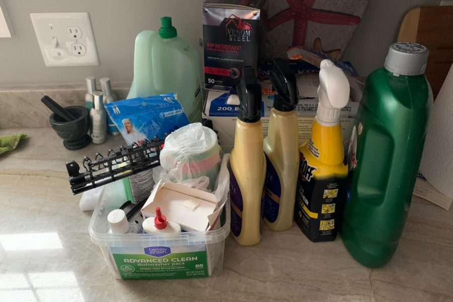 Freshman Imaan Shakoor's family stocked up on cleaning supplies to try to prevent the spread of coronavirus.