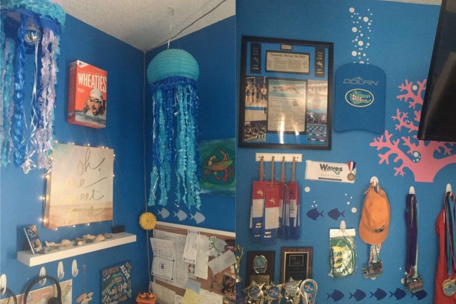 These are some main features of McCay's ocean themed room. One of her most impressive decorations is her lantern jellyfish. She also has coral and bubble decals on her walls.