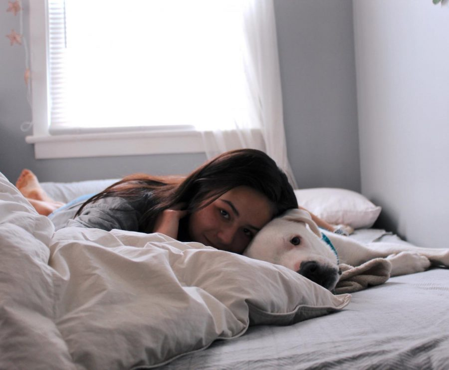 """Sophomore Brigid Banks has a dog named Link. """"Link and I have mostly enjoyed binge watching Netflix and laying around the house all day,"""" Banks said."""