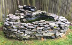 Lankford's finished pond is now free of rocks, sticks, and excess algae.