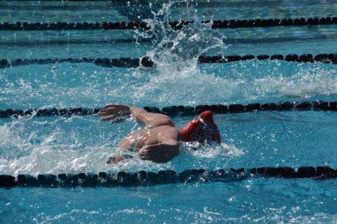 foxy swims