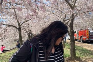 """Freshman Kristi Duong stands around cherry blossom trees, a plant that carries significance and symbolism in Japanese culture. Duong one day hopes to move to Japan, and she believes others should learn more about Japanese culture. """"I really encourage everyone to take part in this beautiful culture and learn a few unique things from it,"""" Duong said."""