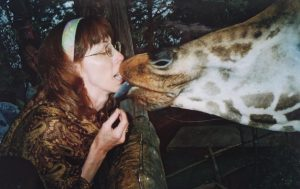"""Geography teacher Jere Borg gives a treat to a giraffe. This is a Kenyan tradition Borg had the chance to take part in on her Cultural Ambassadors trip with JMU in July 2006. """"In Kenya, they call this 'kissing the giraffe.' You hold a peanut in your mouth and the giraffe swipes your mouth with its 18 inch long, black tongue. It feels like getting a kiss from a grizzly old man,"""" Borg said."""